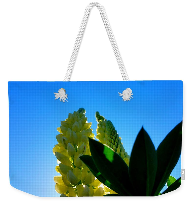 20150523_163311-lupine Camelot-faa.jpg Weekender Tote Bag featuring the photograph Lupine Camelot-1 by Srinivasan Venkatarajan