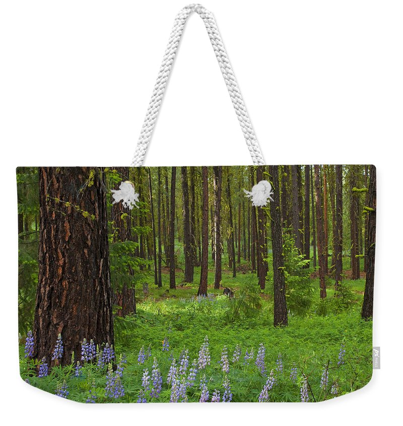 Forest Weekender Tote Bag featuring the photograph Lupine Carpet by Mike Dawson
