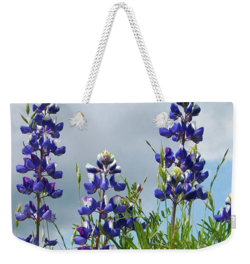 Lupine Weekender Tote Bag featuring the photograph Lupines Against The Sky by Jim And Emily Bush