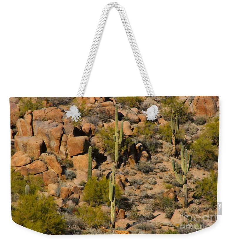 Arizona Weekender Tote Bag featuring the photograph Lush Arizona Desert Landscape by James BO Insogna