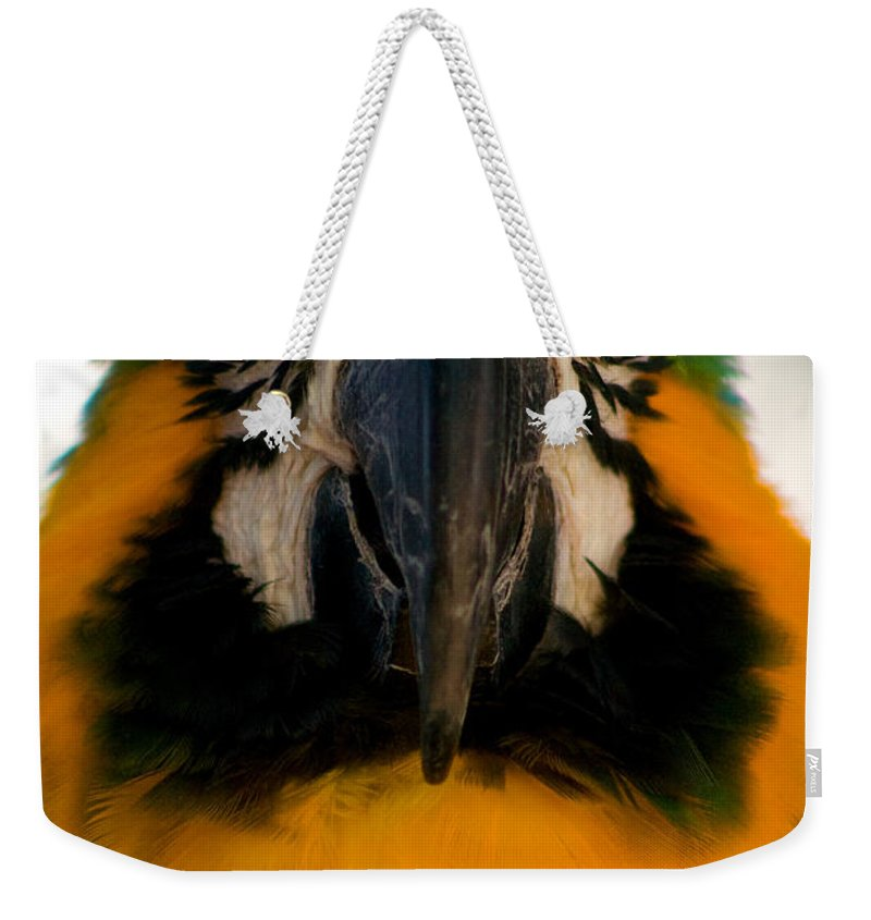 Macaw Weekender Tote Bag featuring the photograph Macaw IIi by Thomas Marchessault