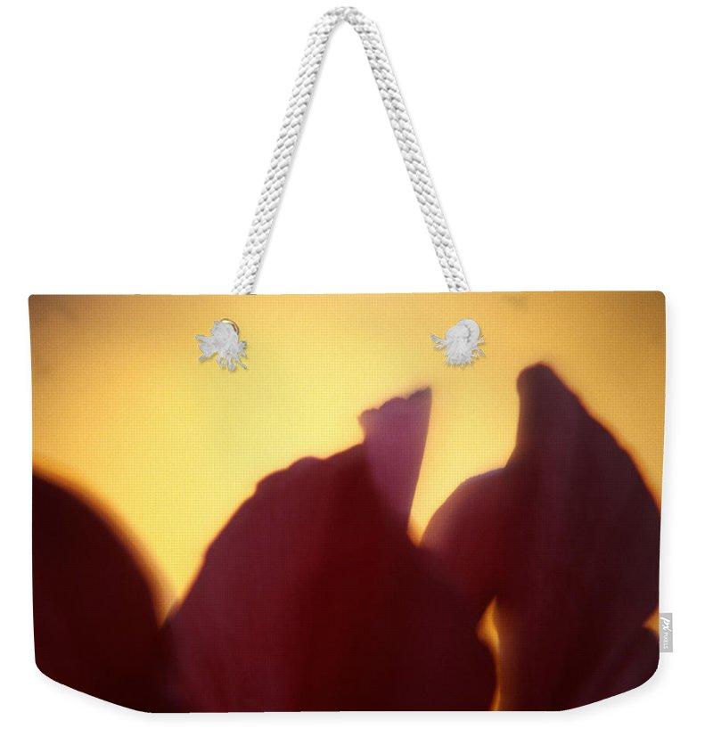 Flower Weekender Tote Bag featuring the photograph Macro Flower by Lee Santa