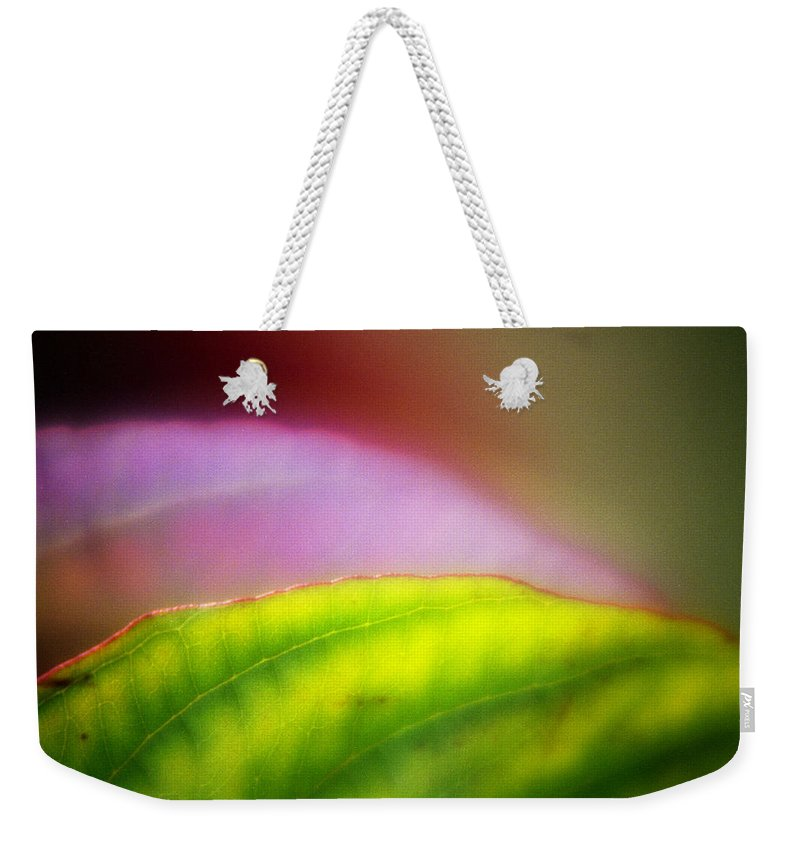 Macro Weekender Tote Bag featuring the photograph Macro Leaf by Lee Santa