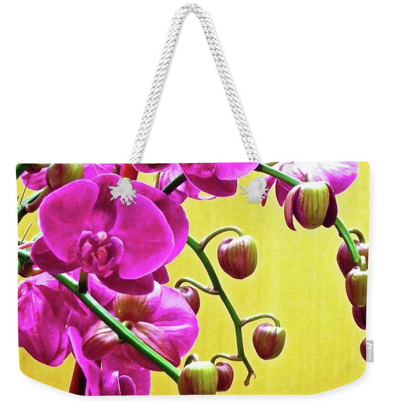 Flower Weekender Tote Bag featuring the photograph Magenta Orchid 3 by Ken Lerner