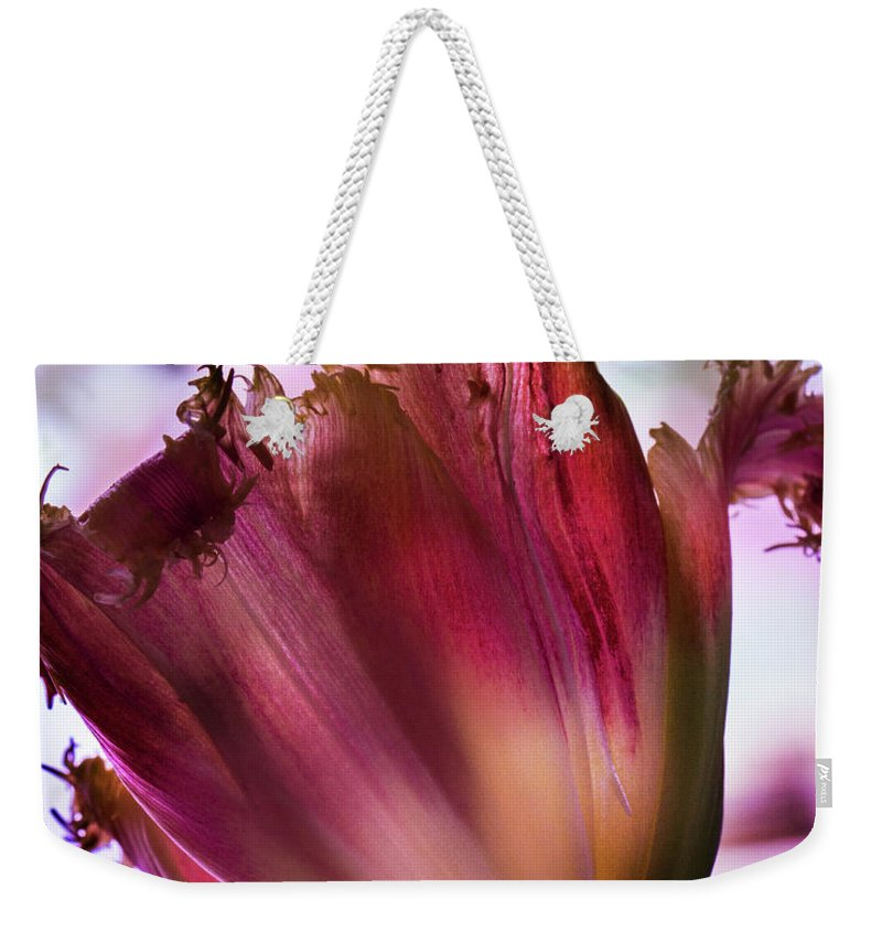 Spring Weekender Tote Bag featuring the photograph Magenta Tulip by Susan Bandy