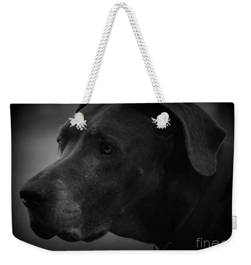 Great Dane Weekender Tote Bag featuring the photograph Maggie by Davis FlowerPower