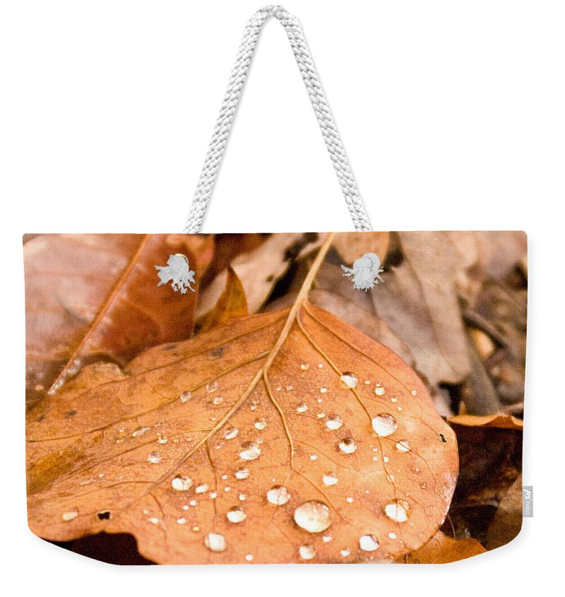 Surface Weekender Tote Bag featuring the photograph Magic Of Surface Tension by Douglas Barnett