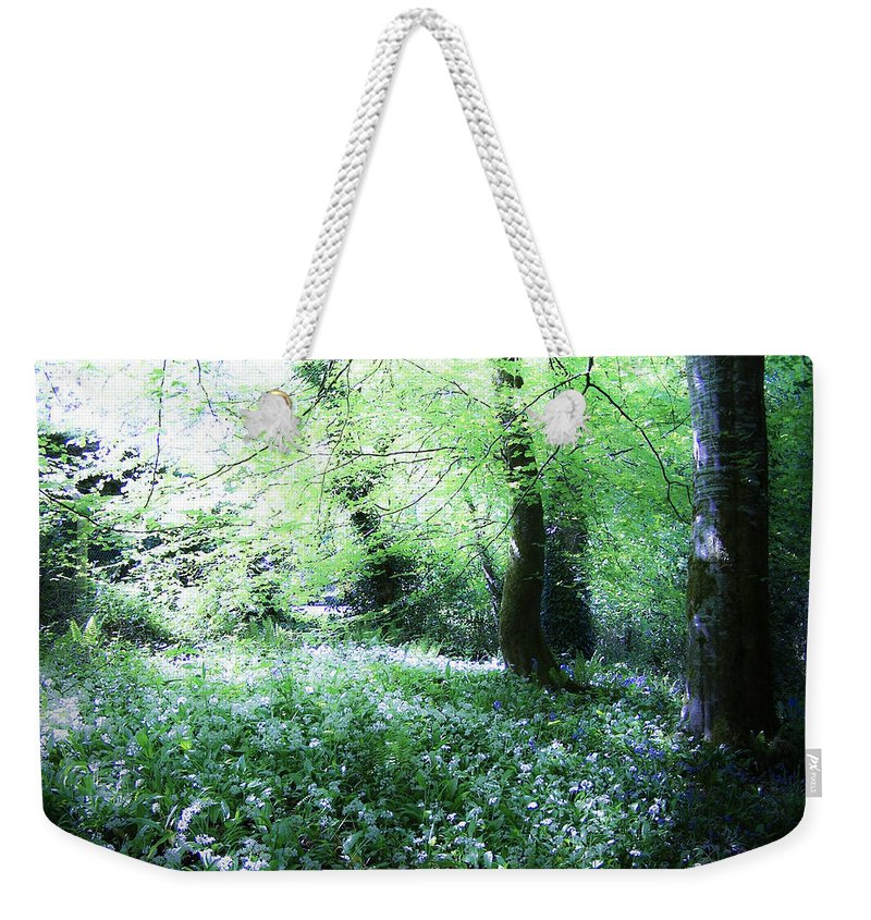 Irish Weekender Tote Bag featuring the photograph Magical Forest At Blarney Castle Ireland by Teresa Mucha