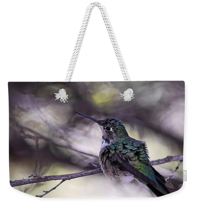Magnificent Weekender Tote Bag featuring the photograph Magnificent Hummingbird by Saija Lehtonen