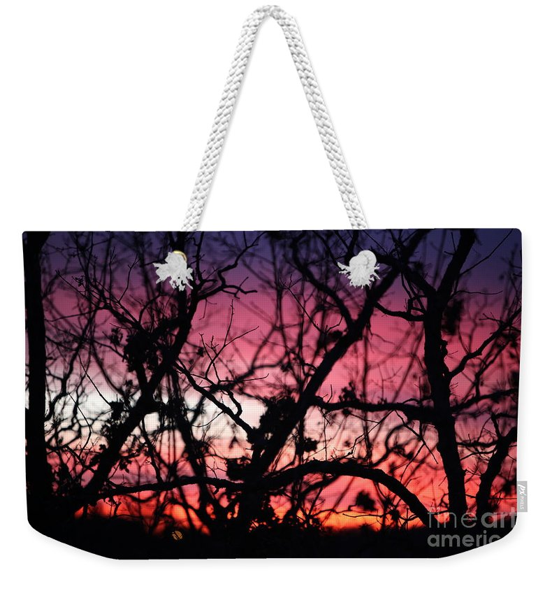 Sunset Weekender Tote Bag featuring the photograph Magnificent Sunset And Trees by Nadine Rippelmeyer