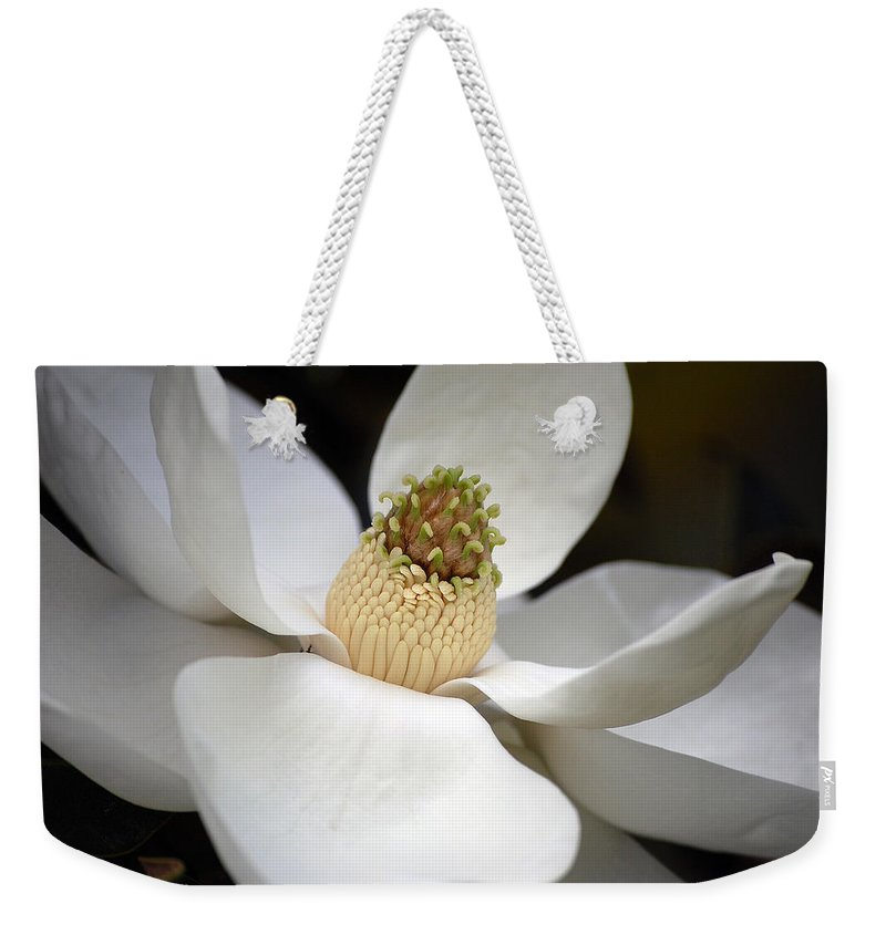 Flowers Weekender Tote Bag featuring the photograph Magnolia 2 by Robert Meanor