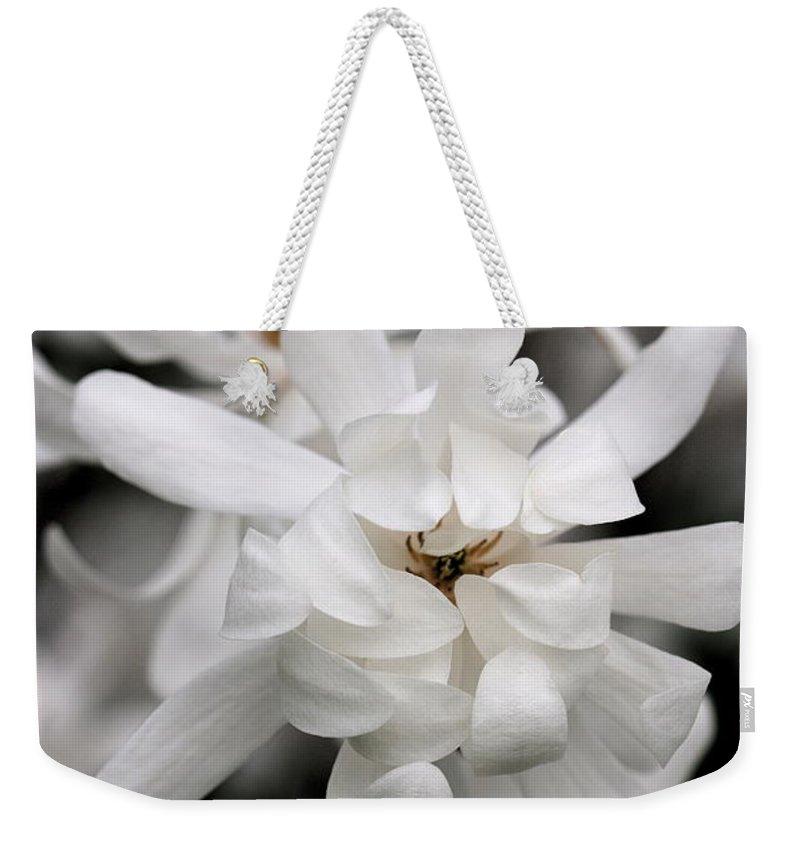 Flower Weekender Tote Bag featuring the photograph Magnolia by Angela Rath