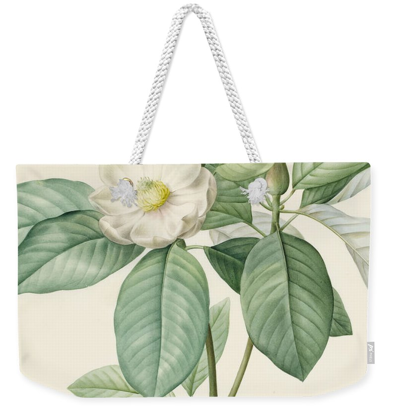 Magnolia Weekender Tote Bag featuring the painting Magnolia Glauca by Pierre Joseph Redoute