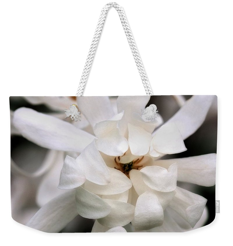 Flower Weekender Tote Bag featuring the photograph Magnolia Square by Angela Rath