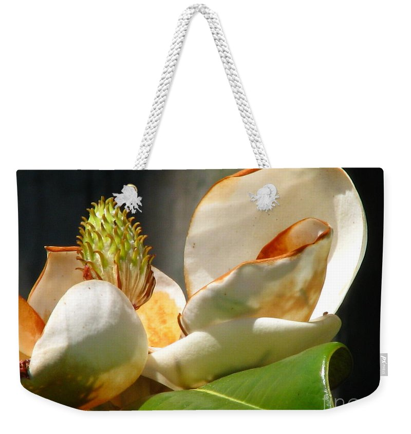Patzer Weekender Tote Bag featuring the photograph Magnolia Sunburn by Greg Patzer