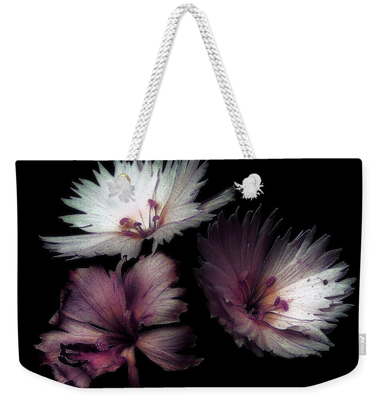 Dianthus Weekender Tote Bag featuring the painting Maiden Mother Crone by RC DeWinter