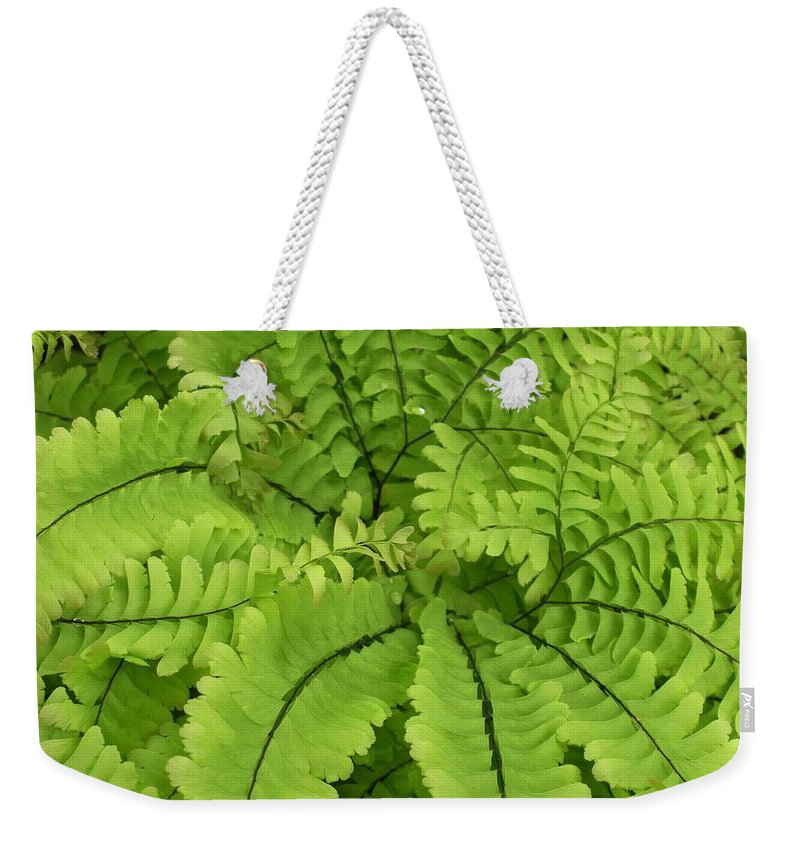 Fern Weekender Tote Bag featuring the photograph Maidenhair by Nelson Strong