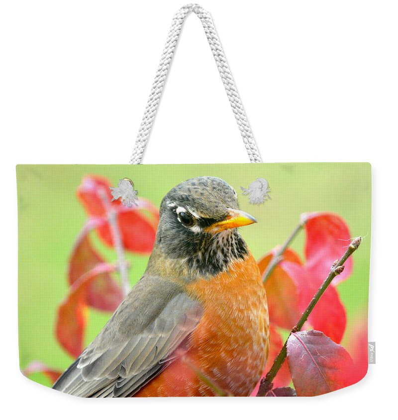 Robin Orange Maine Fall Weekender Tote Bag featuring the photograph Maine Fall Robin by Sheila Price