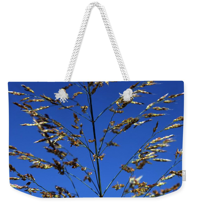 Nature Weekender Tote Bag featuring the photograph Making A Sound by Amanda Barcon