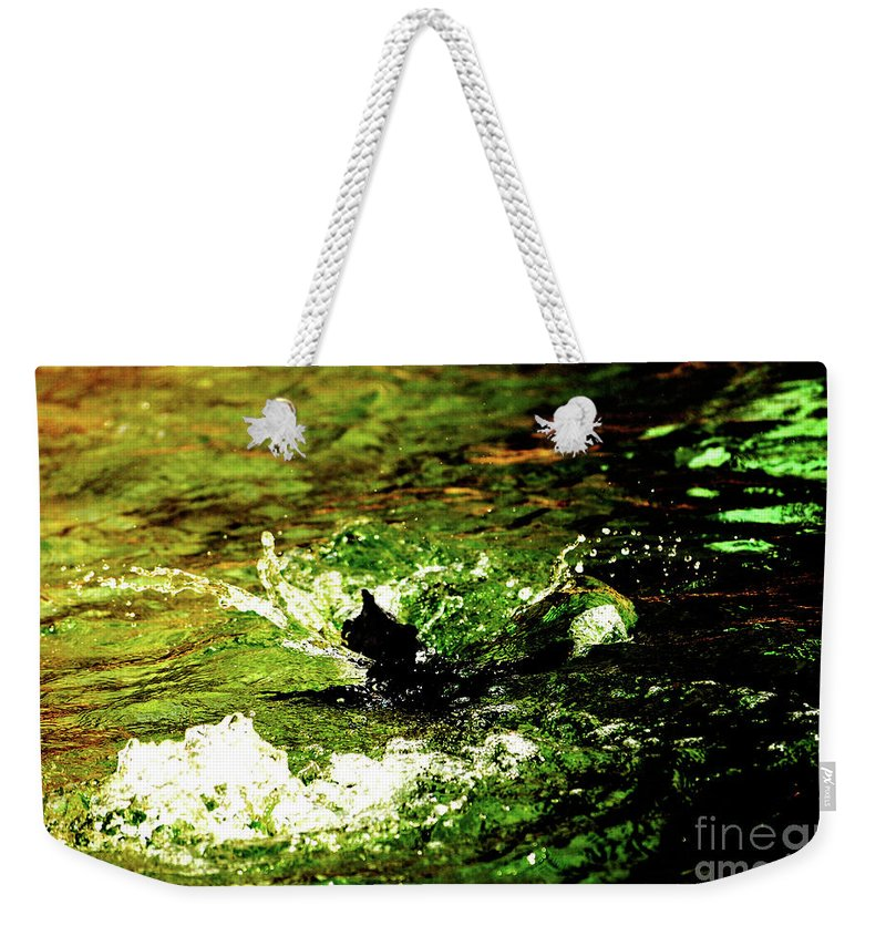 Water Weekender Tote Bag featuring the photograph Making A Splash by Lori Tambakis