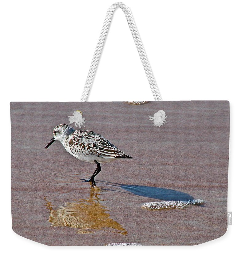 Bird Weekender Tote Bag featuring the photograph Making Its Mark by Diana Hatcher