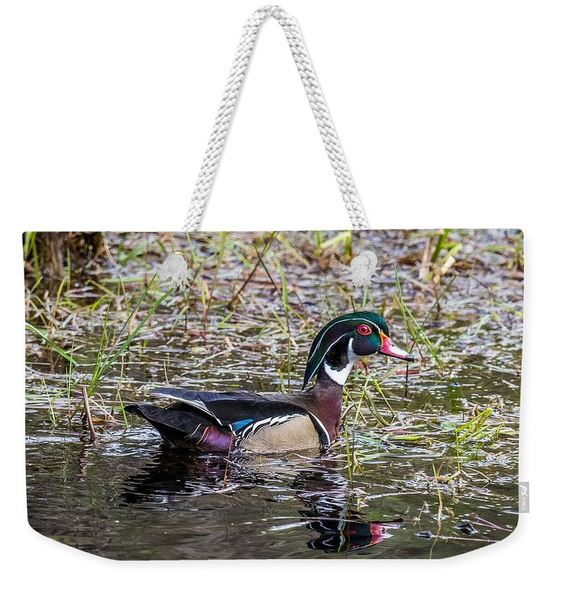 Duck Weekender Tote Bag featuring the photograph Male Wood Duck by Paul Freidlund