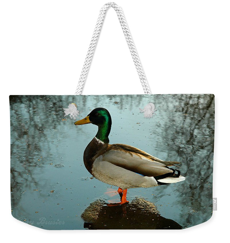 Clay Weekender Tote Bag featuring the photograph Mallard by Clayton Bruster