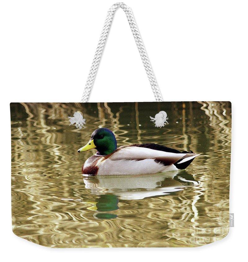 Mallard Weekender Tote Bag featuring the photograph Mallard Drake by Sharon Talson