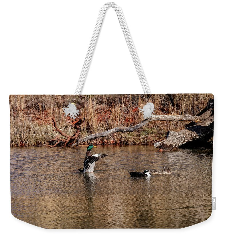 Horizontal Weekender Tote Bag featuring the photograph Mallard Duck by Doug Long