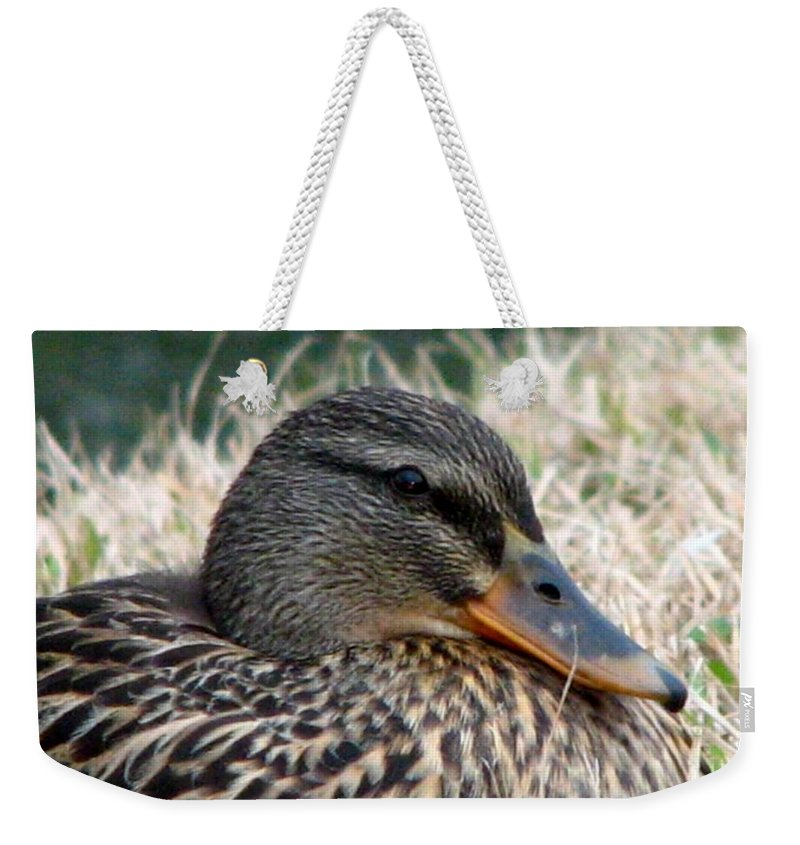 Duck Weekender Tote Bag featuring the photograph Mallard Female 2 by J M Farris Photography