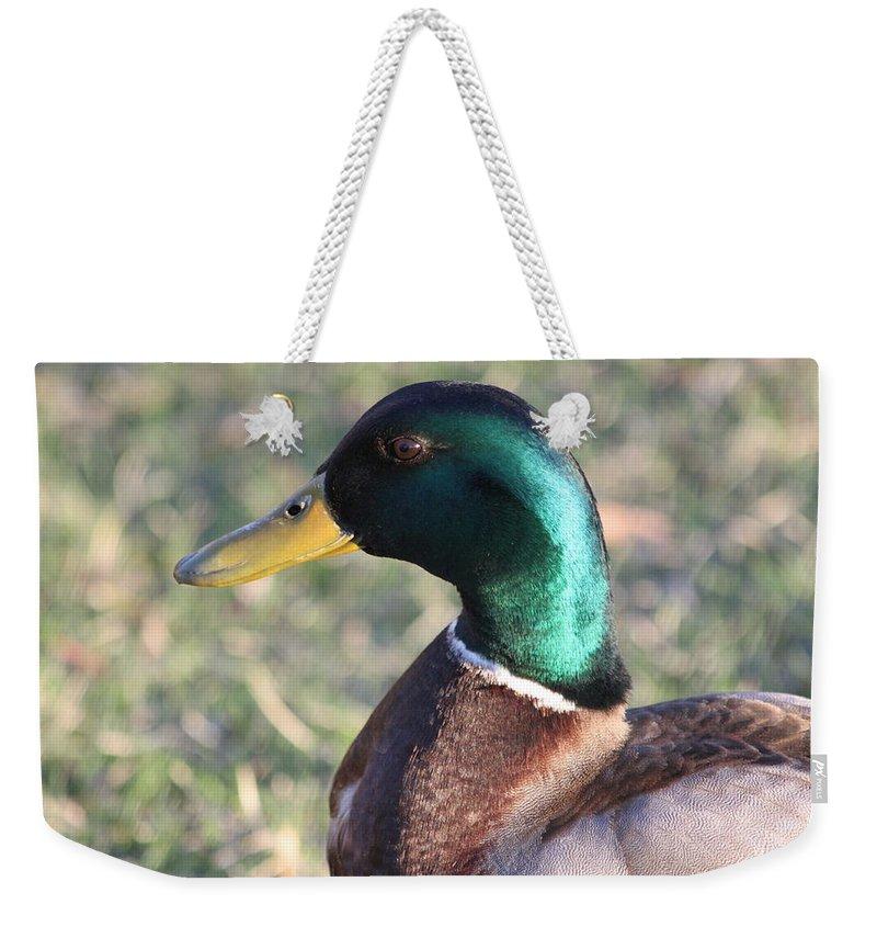 Mallard Weekender Tote Bag featuring the photograph Mallard Green by Lauri Novak