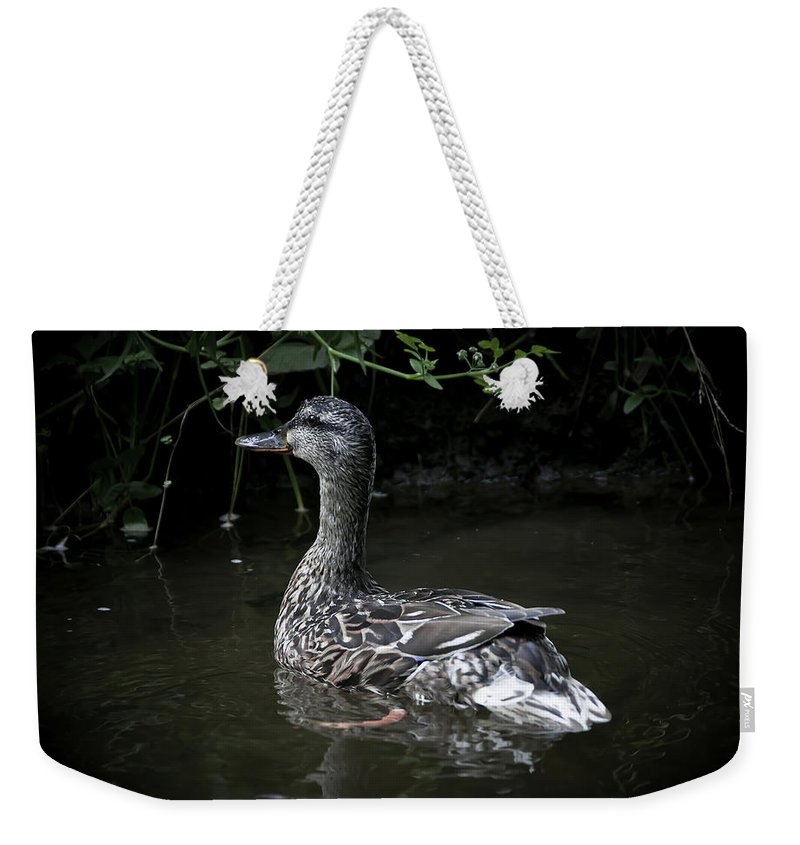 Duck Weekender Tote Bag featuring the photograph Mama Duck by Svetlana Sewell