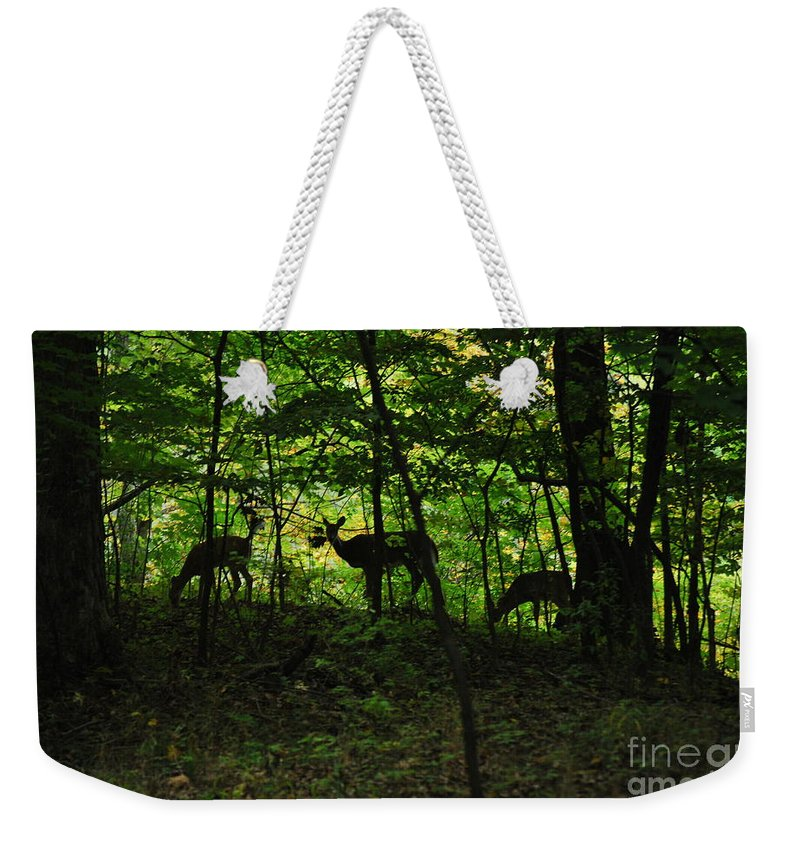 Deer Weekender Tote Bag featuring the photograph Mamma And Twins by Michelle Hastings