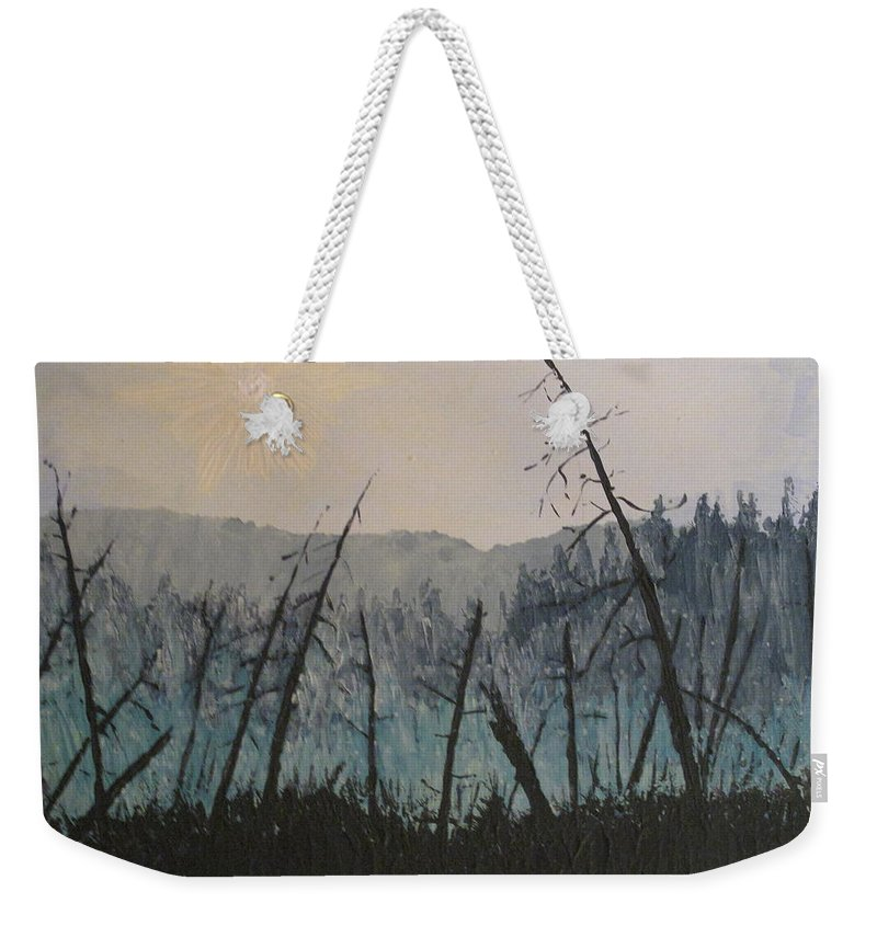 Northern Ontario Weekender Tote Bag featuring the painting Manitoulin Beaver Meadow by Ian MacDonald