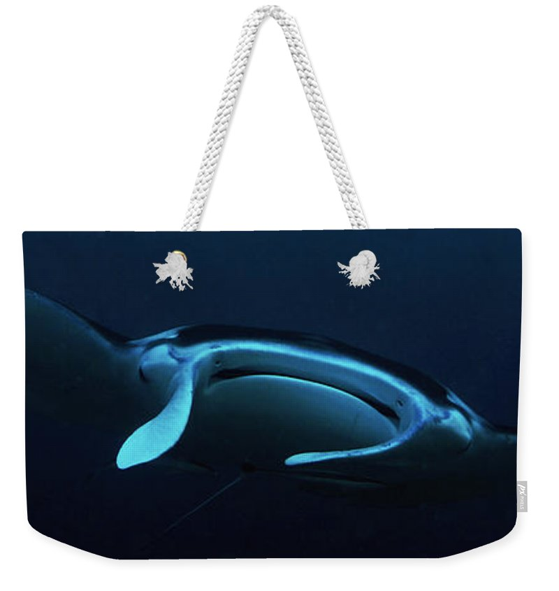 Manta Weekender Tote Bag featuring the photograph From The Depths by Mumbles and Grumbles
