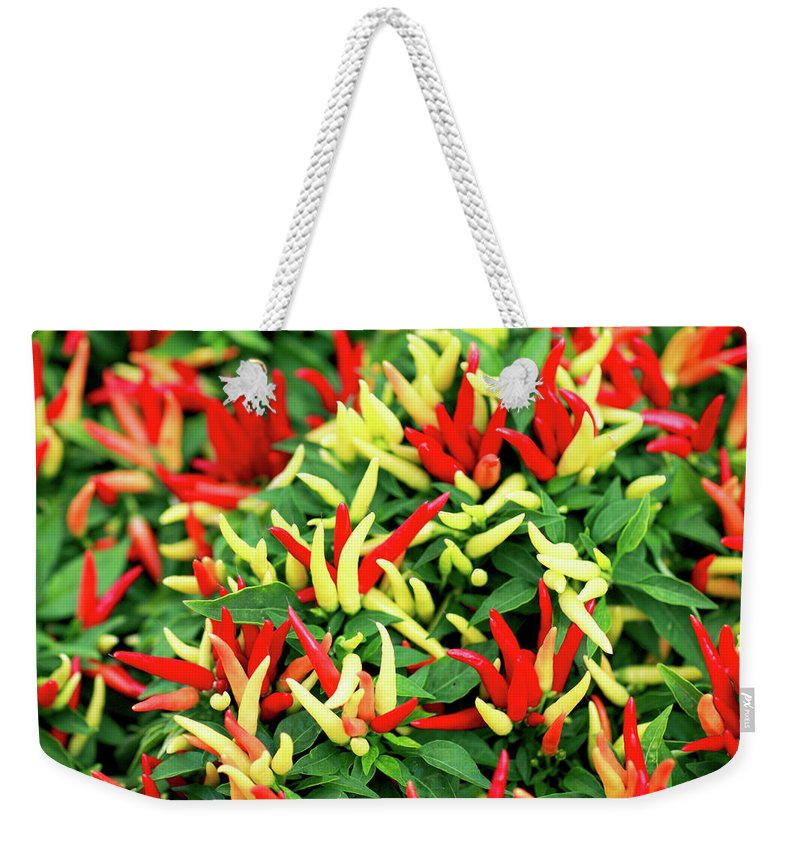 Farmers Market Weekender Tote Bag featuring the photograph Many Peppers by Todd Klassy