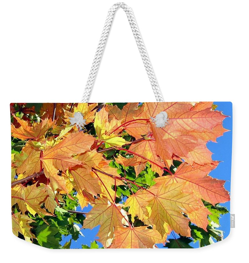 Autumn Weekender Tote Bag featuring the photograph Maple Mania 1 by Will Borden