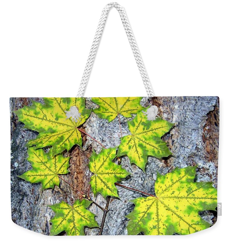 Autumn Weekender Tote Bag featuring the photograph Maple Mania 12 by Will Borden
