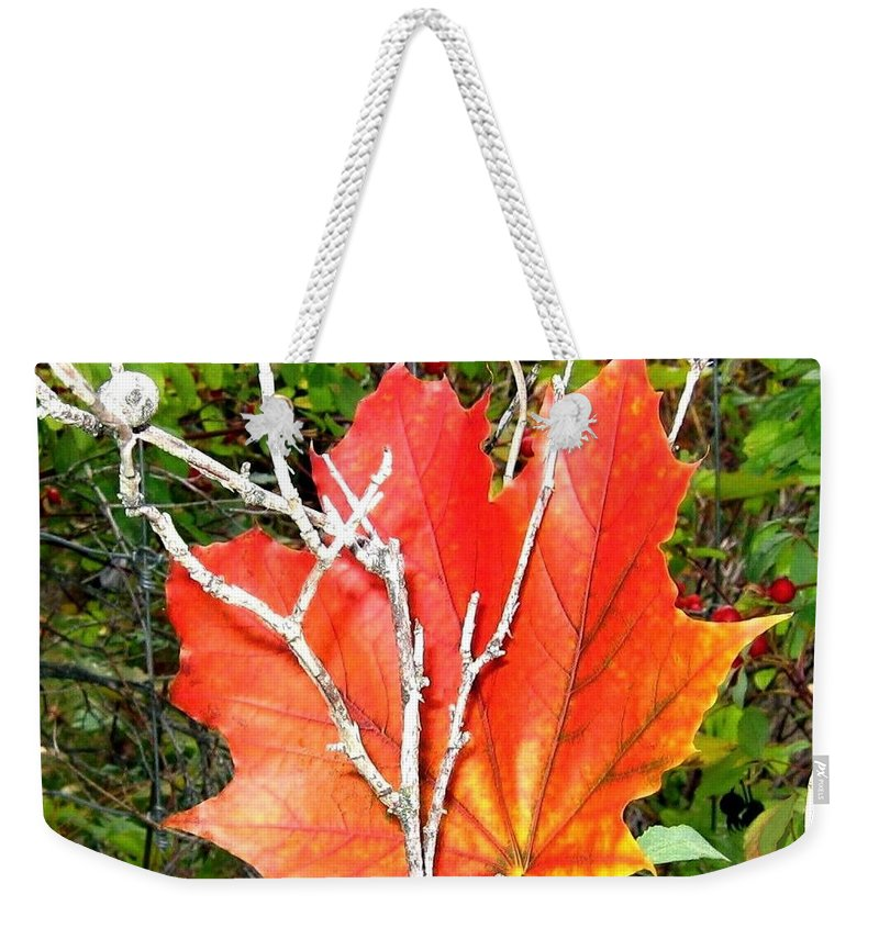 Autumn Weekender Tote Bag featuring the photograph Maple Mania 6 by Will Borden