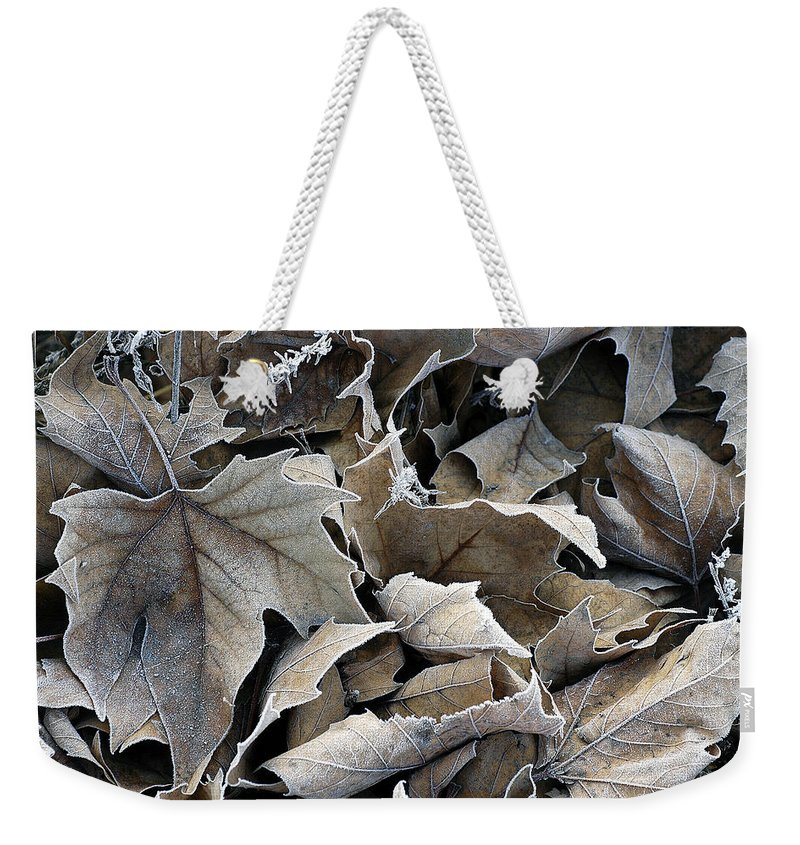 Maple Weekender Tote Bag featuring the photograph Maple Salad by D'Arcy Evans