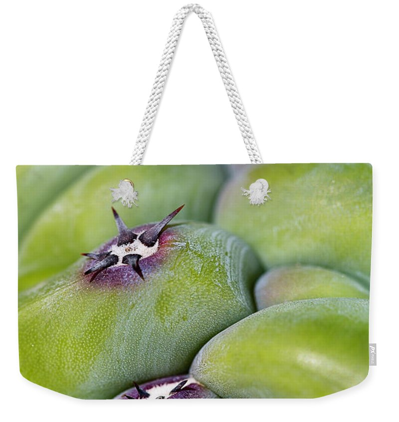 Cactus Weekender Tote Bag featuring the photograph Mars Landing by Nancy Forehand