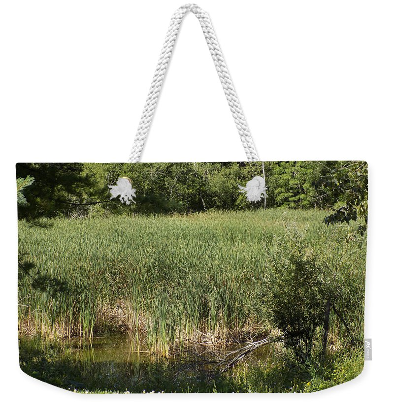 Marsh Weekender Tote Bag featuring the photograph Marsh Grass by William Tasker