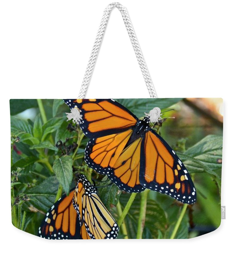 Monarch Weekender Tote Bag featuring the photograph Marvelous Monarchs by Carol Bradley