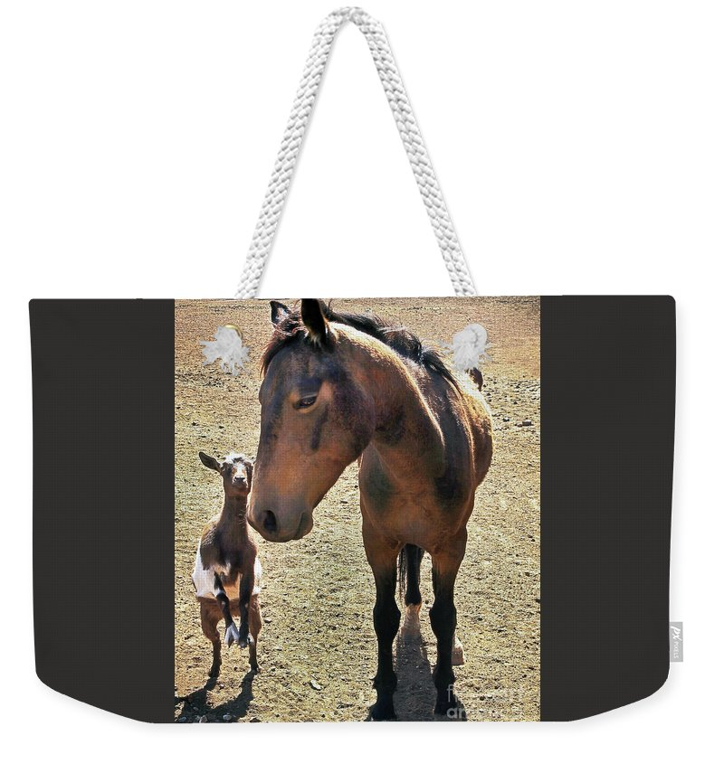 Buddies Weekender Tote Bag featuring the photograph Me And My Best Buddy by Don Schimmel