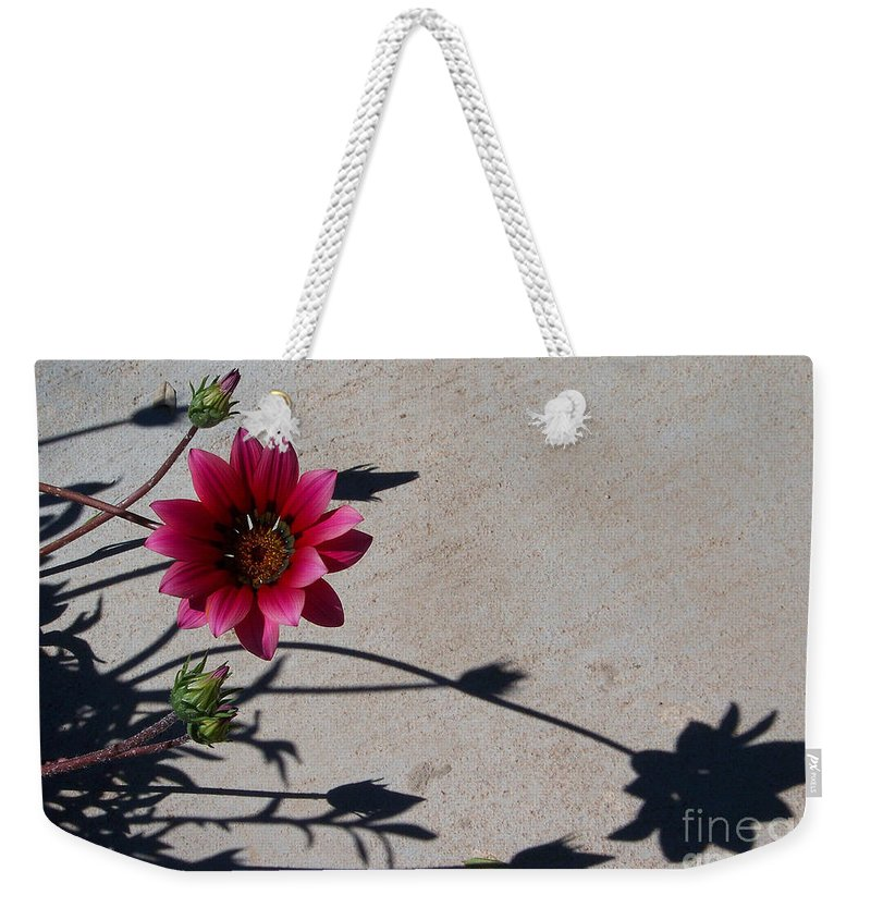 Flowers Weekender Tote Bag featuring the photograph Me And My Shadow by Kathy McClure
