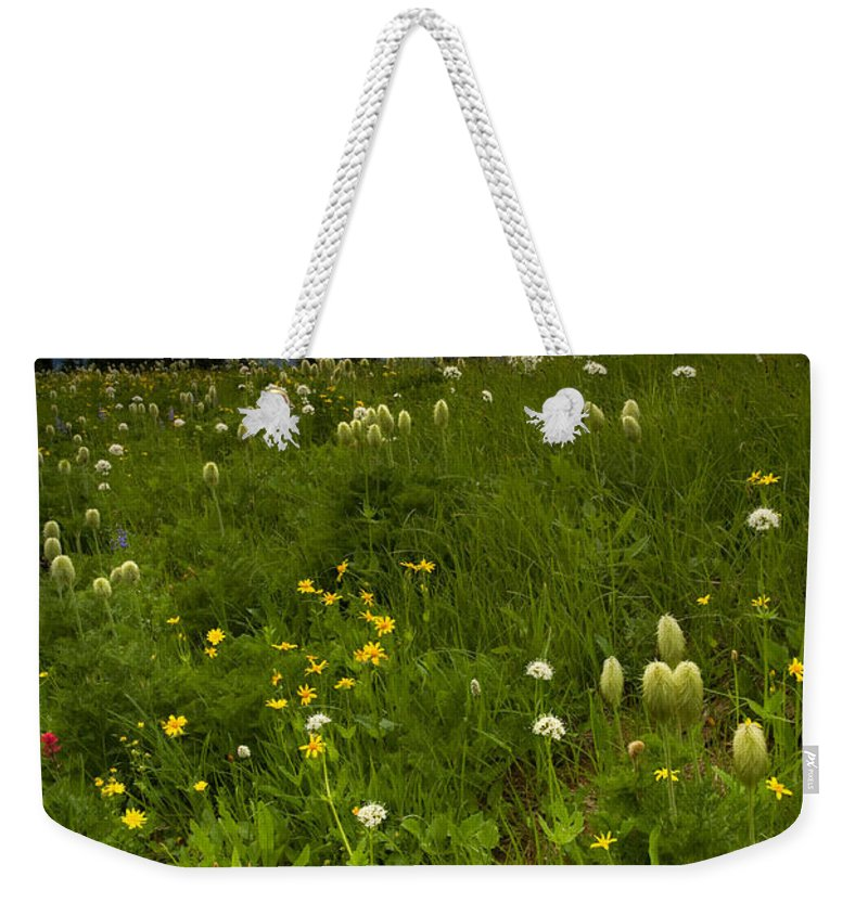 Rainier Weekender Tote Bag featuring the photograph Meadow Beneath The Storm by Mike Dawson
