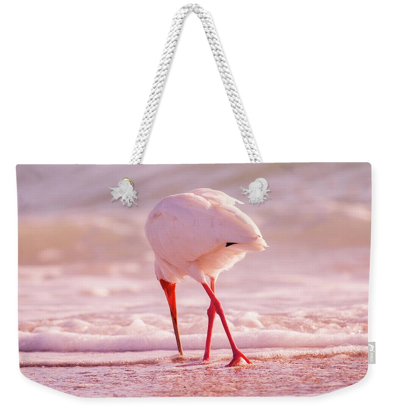 Ibis Weekender Tote Bag featuring the photograph Meandering Beauty Cortez Beach by Betsy Knapp