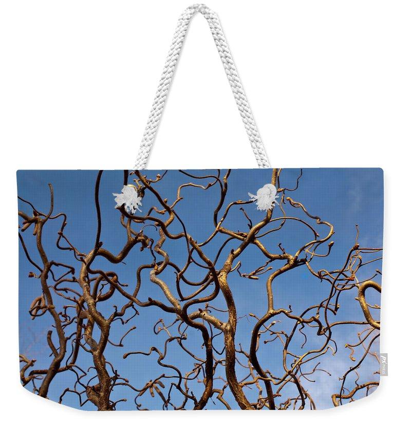 Medusa Weekender Tote Bag featuring the photograph Medusa Limbs Reaching For The Sky by Douglas Barnett