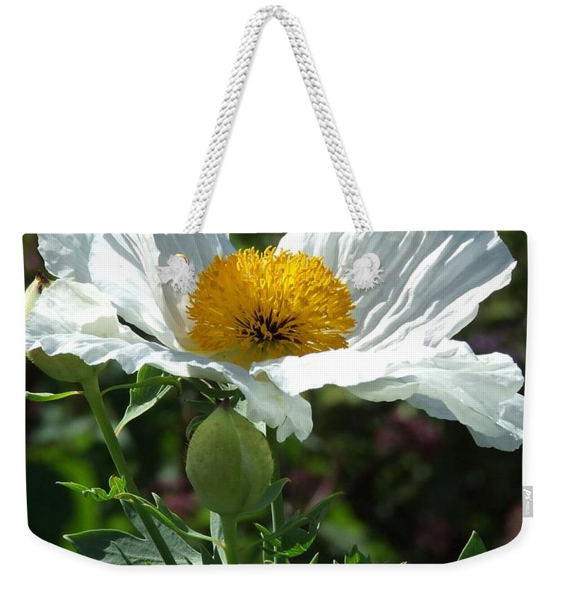 Poppy Weekender Tote Bag featuring the photograph Mega-poppy by Bob Kemp