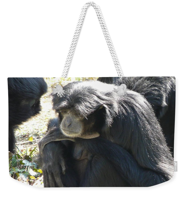 Animal Weekender Tote Bag featuring the photograph Melancholy by Valerie Ornstein